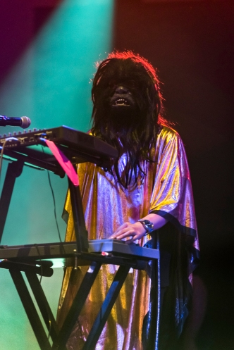 The Wookies © Gus Morainslie